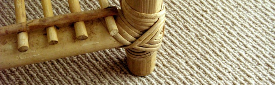Review Cleanpro Carpet Cleaning In Denver Co
